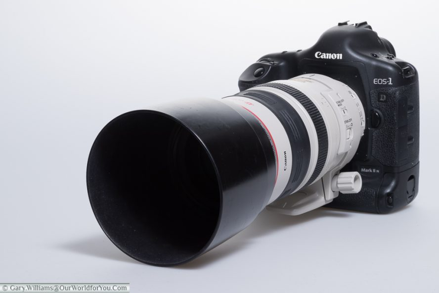 Canon EOS 1D Mark II N - My first 1D Canon, with the splendid 70-200mm L series lens attached