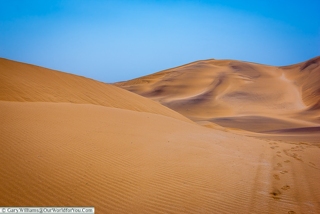 Chris Nel reflects amonst the dunes, Living Desert Adventures, Walvis Bay, Swakopmund, Namibia