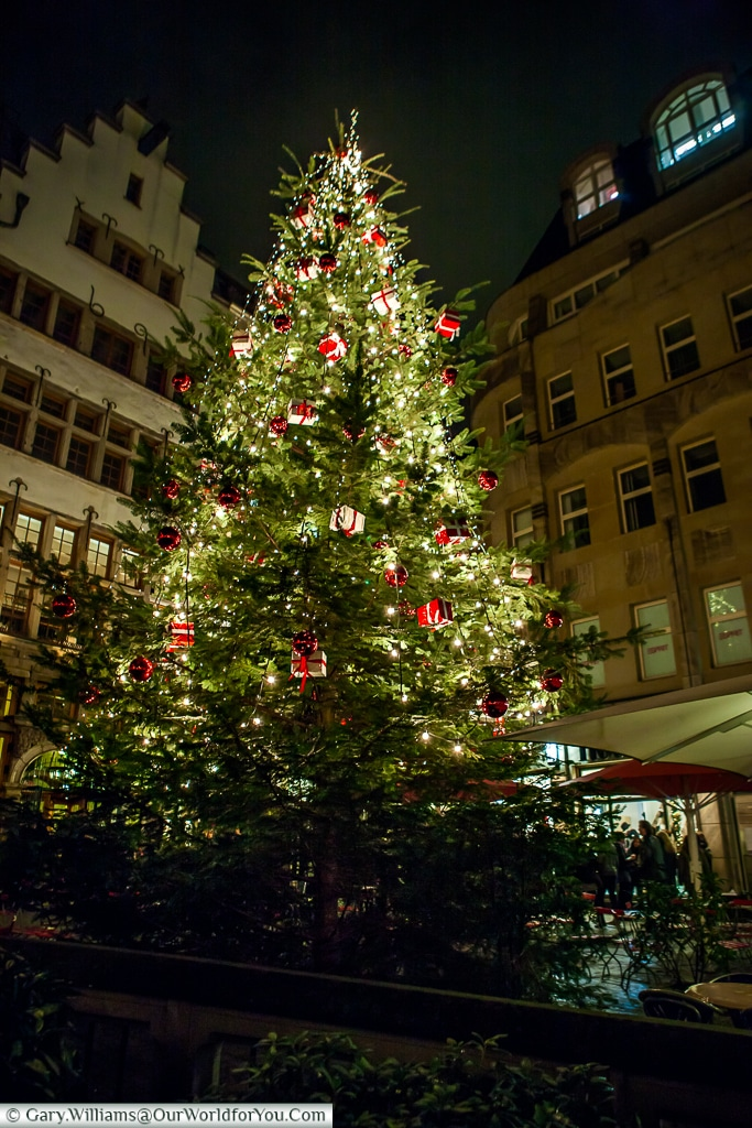 The Christmas tree by Domkloster, Cologne, Germany