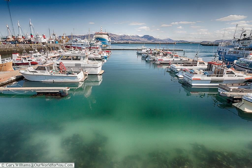 The marina at Reykjavík, Iceland