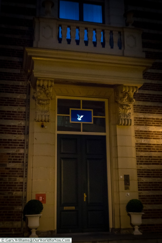 A dove in flight, Trajectum Lumen, Utrecht, Netherlands