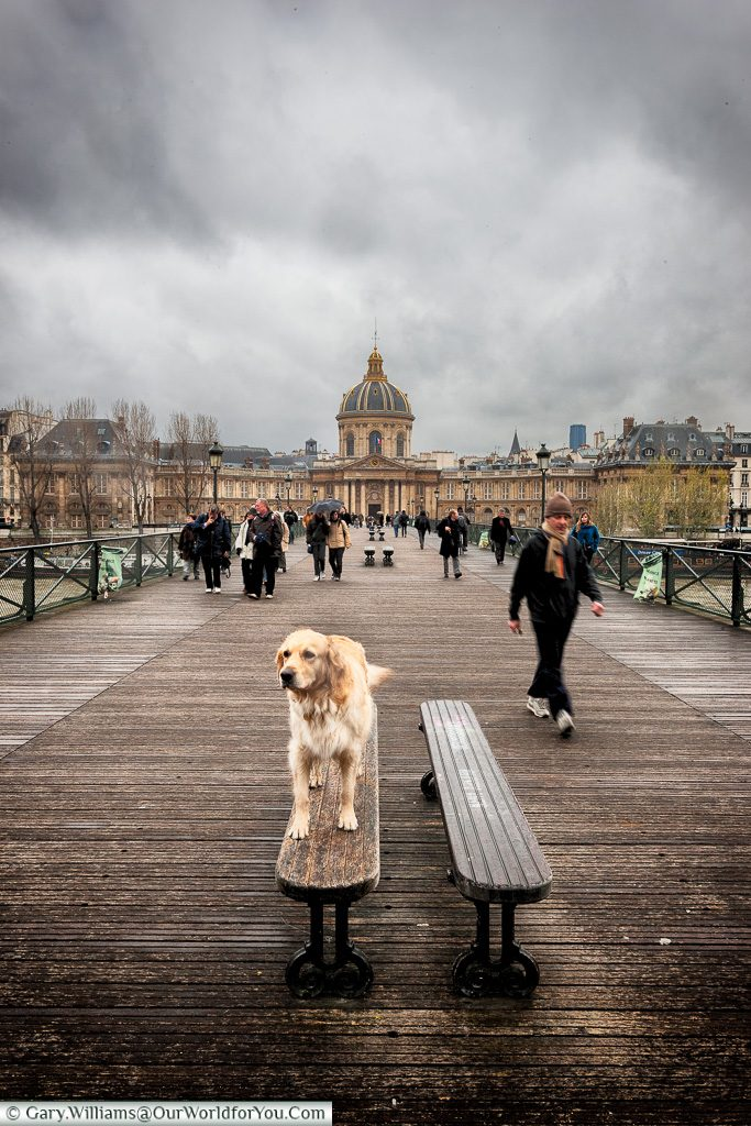 Walkies on the Pont des Arts, Paris, France