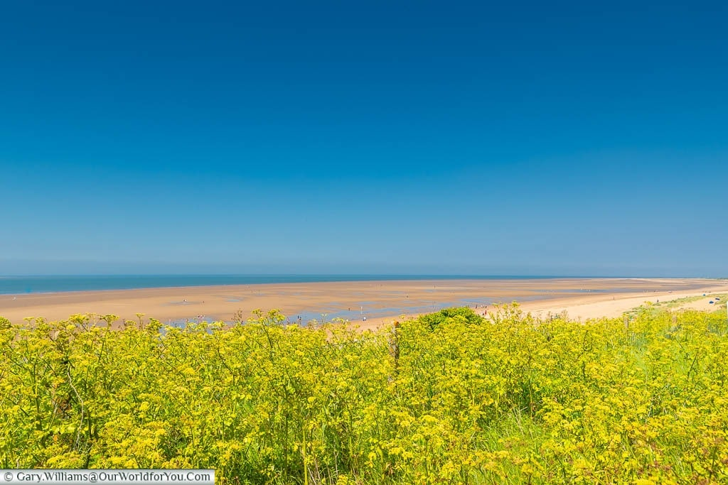 The shoreline at Hunstanton under a deep blue sky with lush green vegetation in the foreground