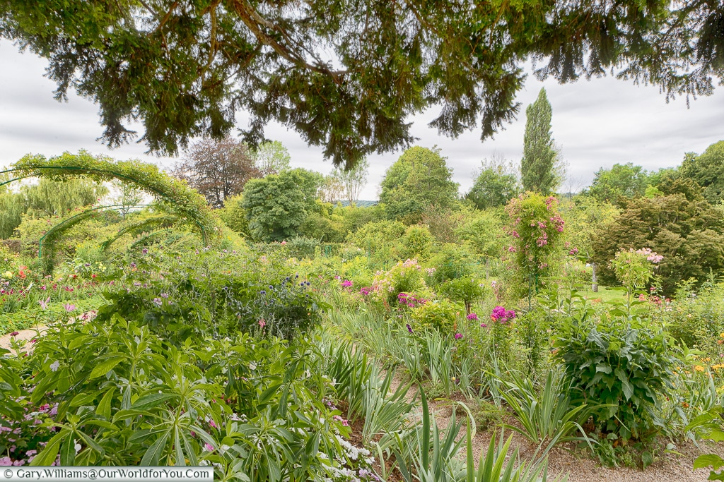 Deep in the gardens, Giverny, Normandy, France