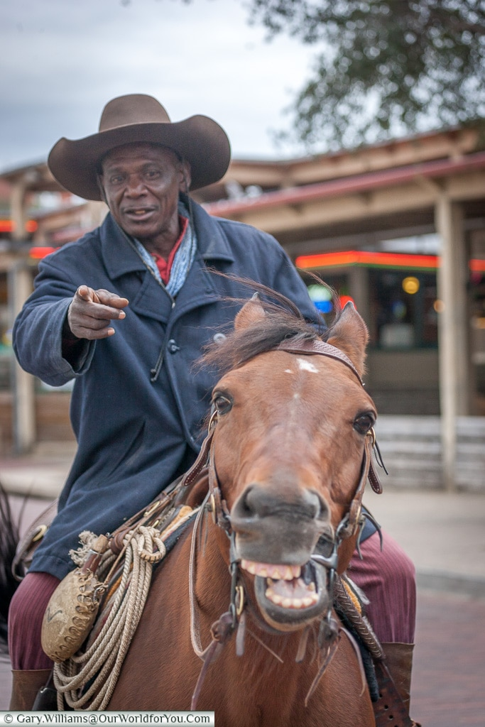 Smile for the camera, Stockyards. Fort Worth, Texas, USA