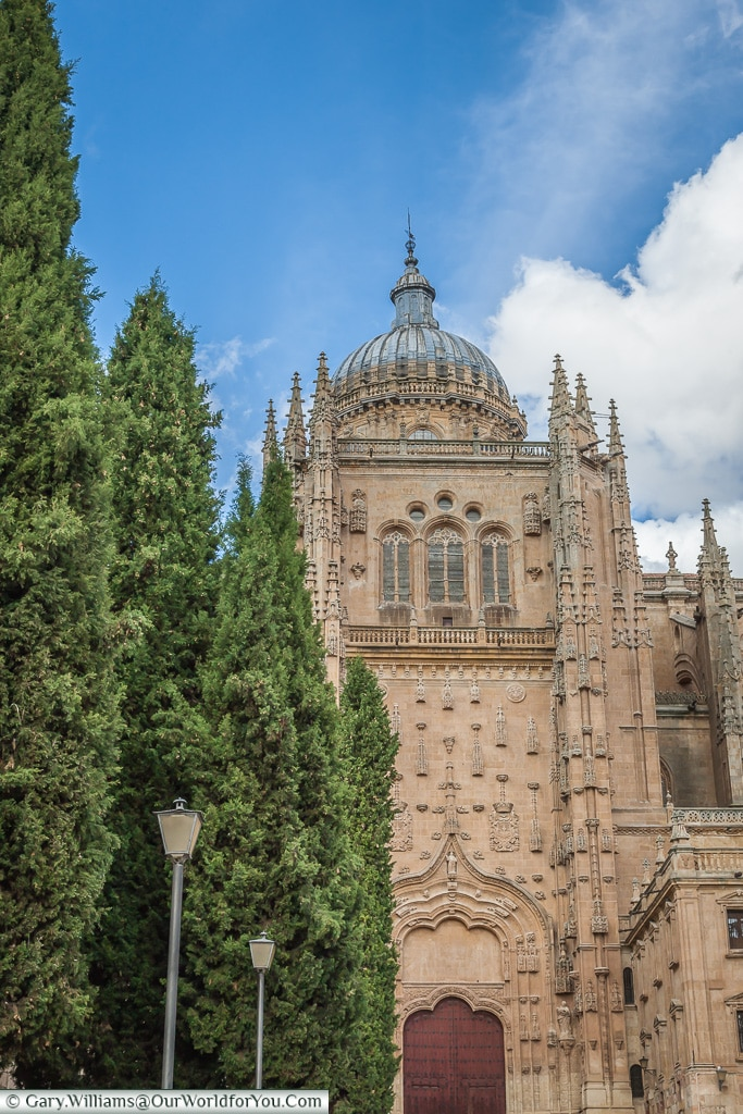 The Old Cathedral, Salamanca, Spain