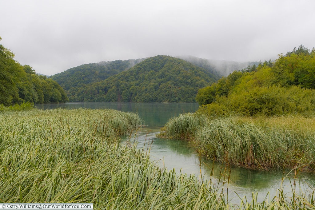 Maeandering water, Plitvice Lakes, Croatia