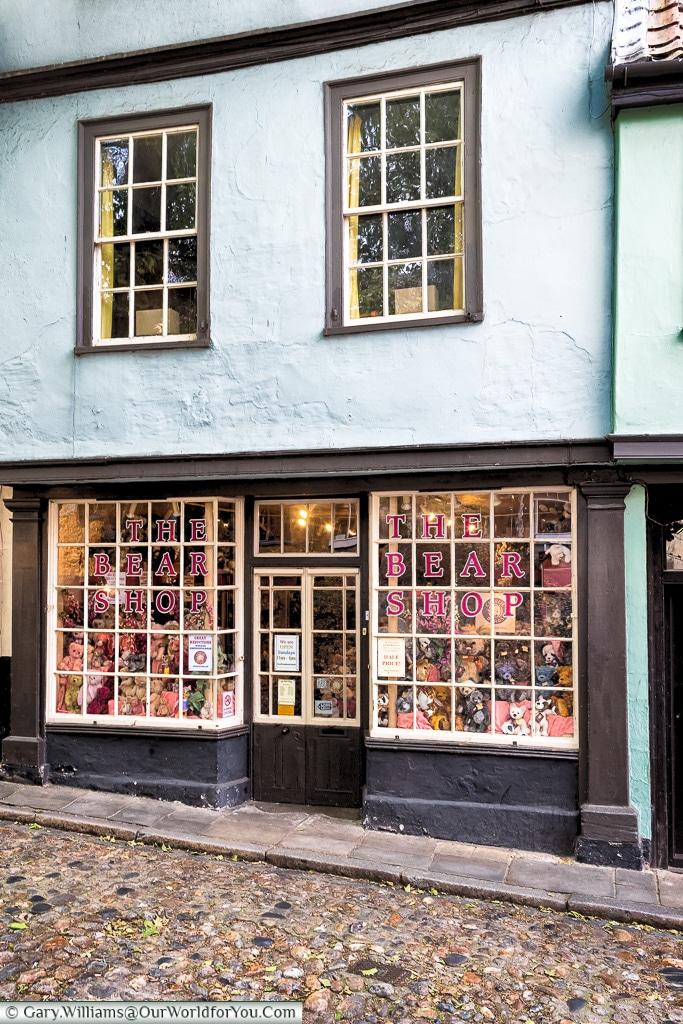 The Bear Shop, Norwich, Norfolk, England