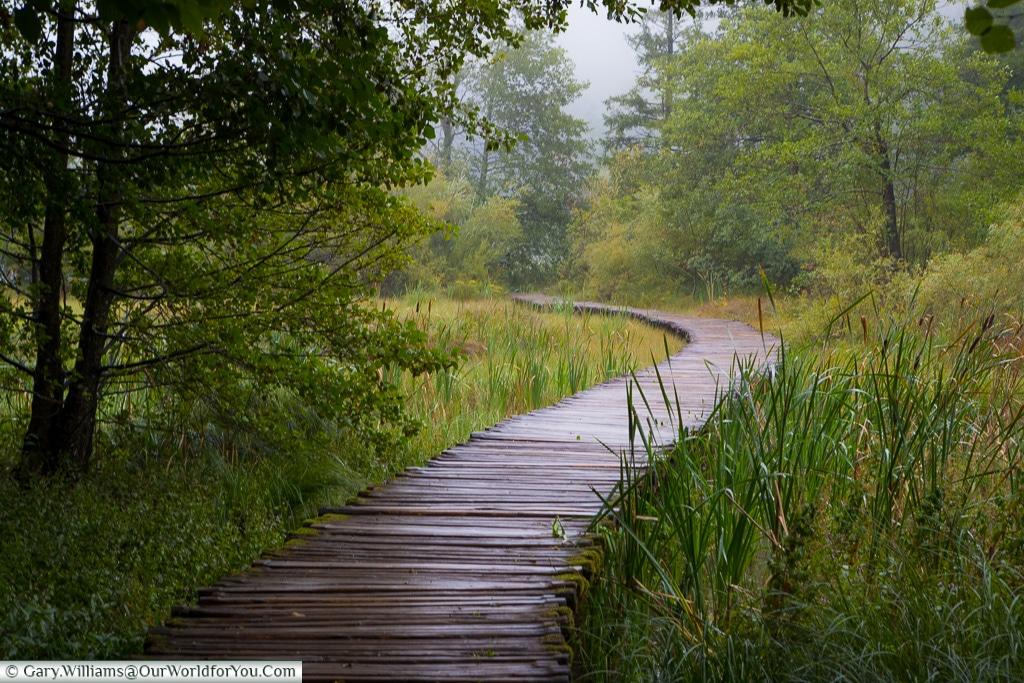 The wooden paths through the upper lakes, Plitvice Lakes, Croatia