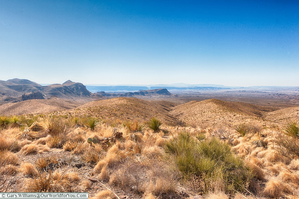 The landscape of Big Bend NP, Texas, America, USA