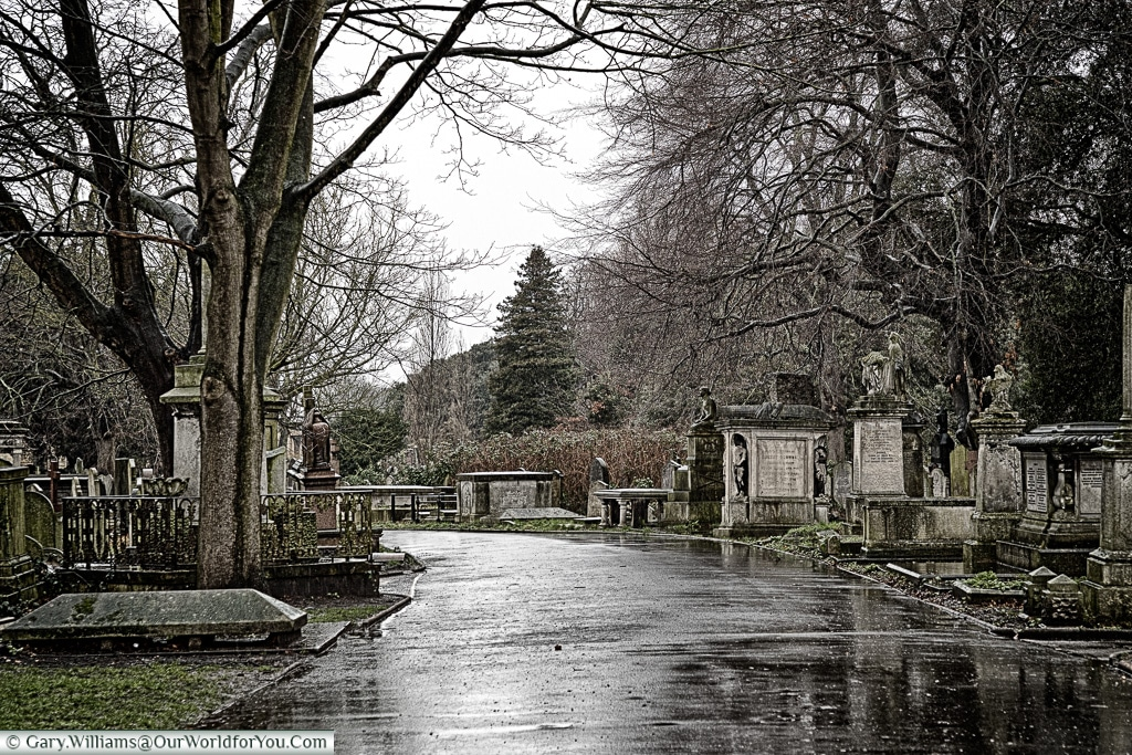 A damp day in Brompton Cemetery, London, England, UK