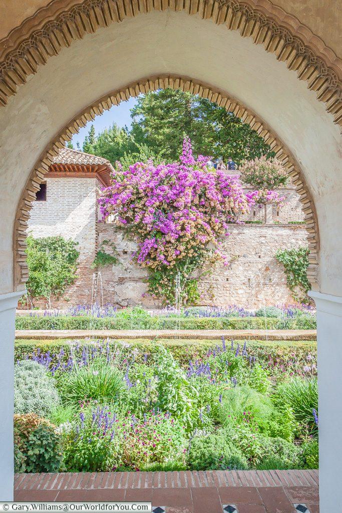 Framed Jardines del Paraiso in the Alhambra, Granada, Spain