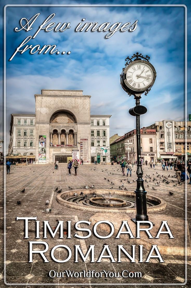 The Timisoara Gallery