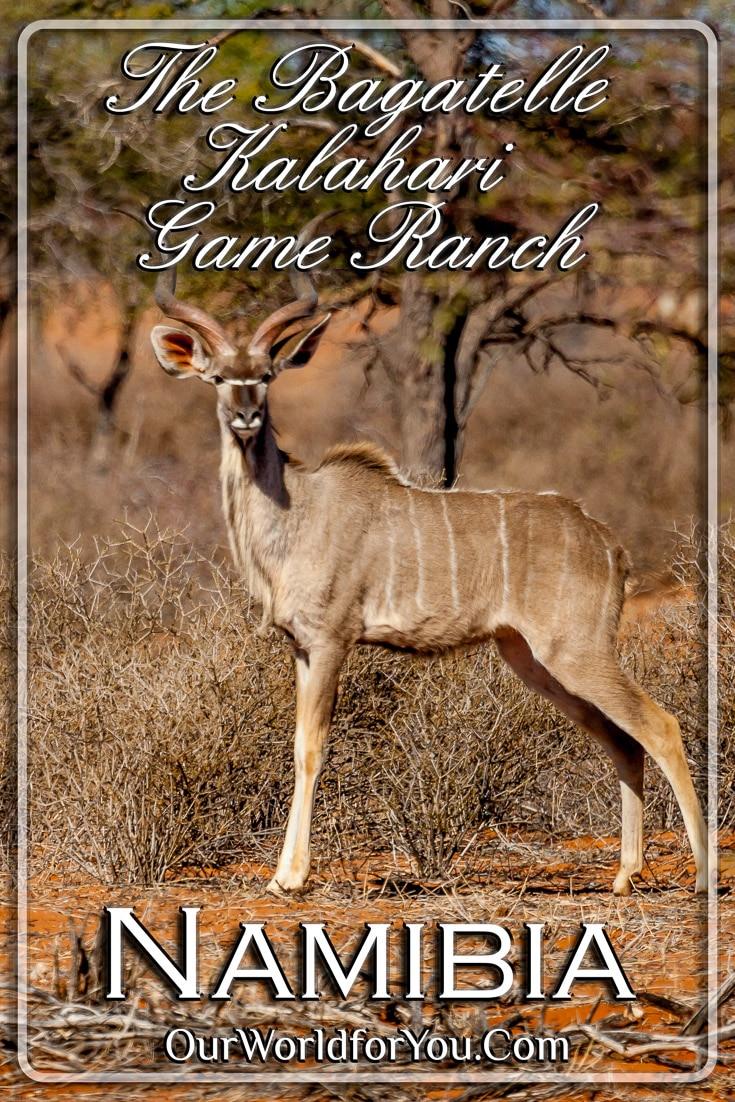 Bagatelle Kalahari Game Ranch, Namibia