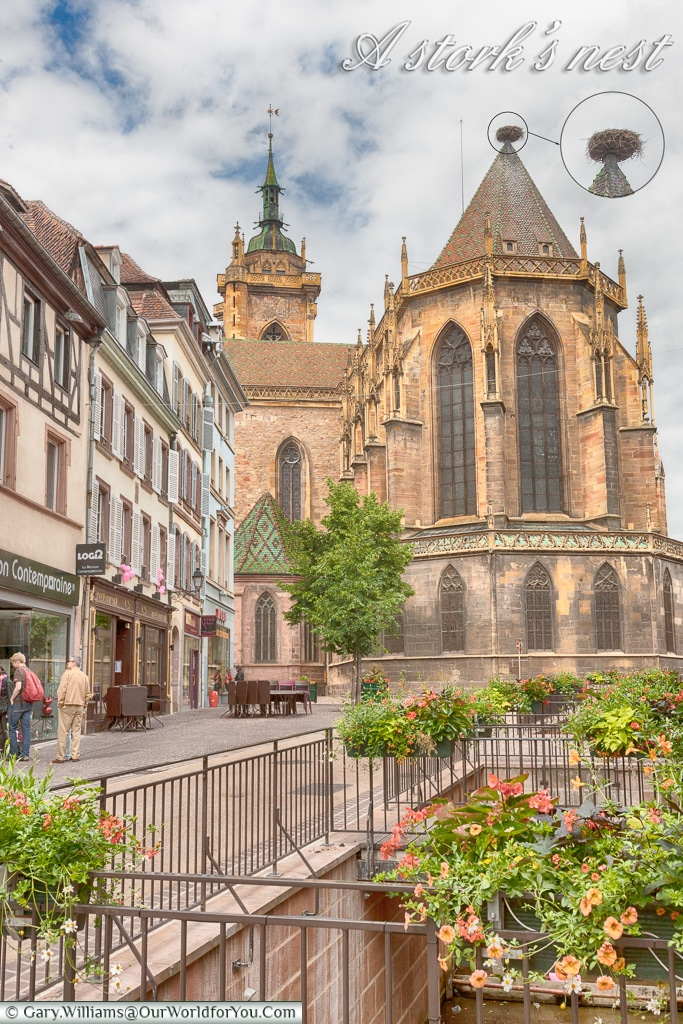 A Stork's nest in Colmar, Alsace, France