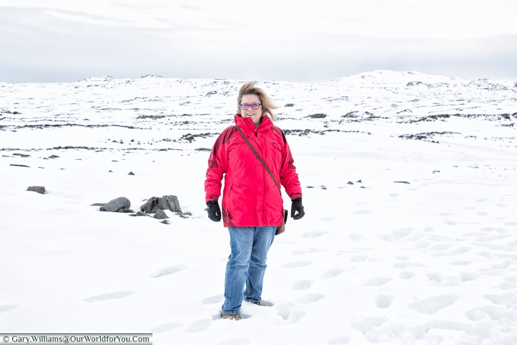 Janis in the snow in the south-west of Iceland