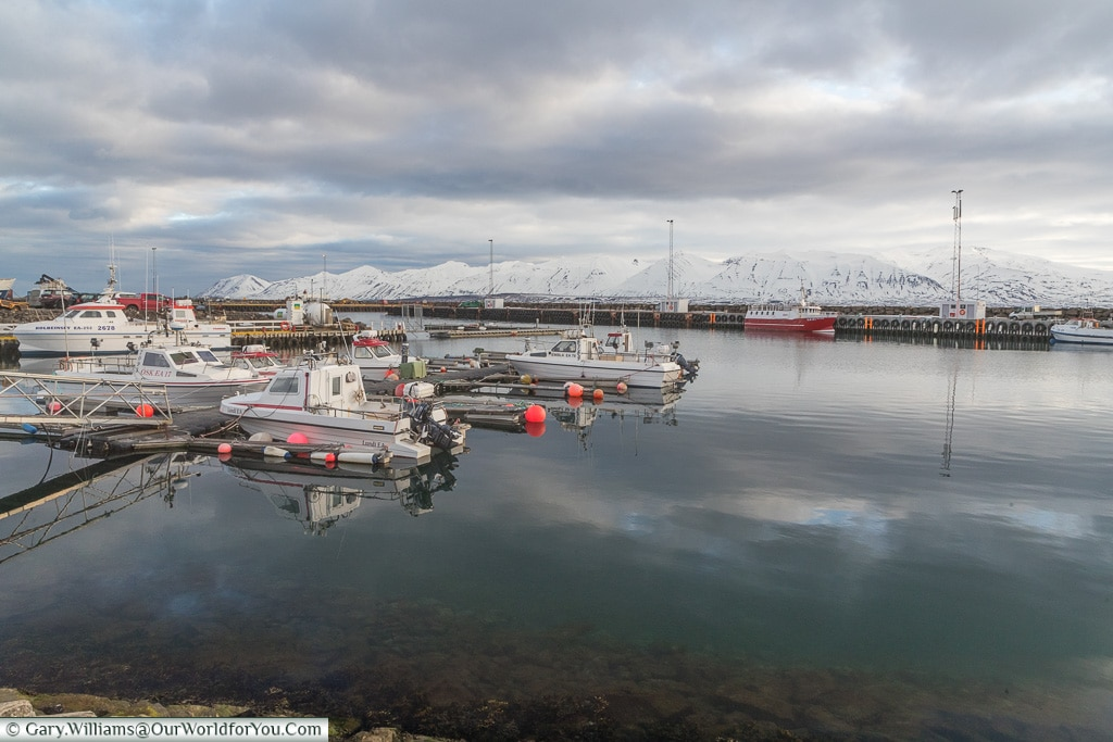 The harbour at Dalvik, Iceland