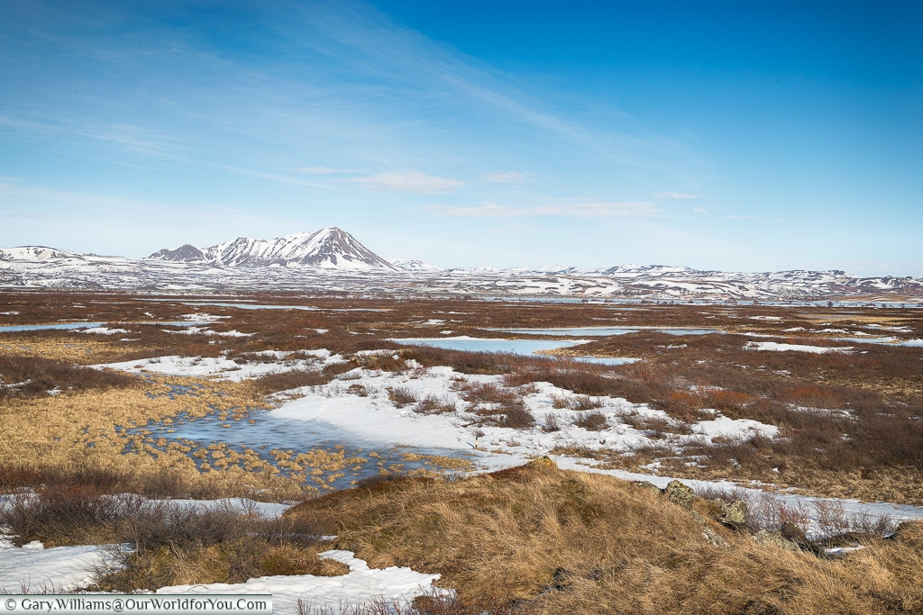 The Landscape around Lake Myvatn, Iceland