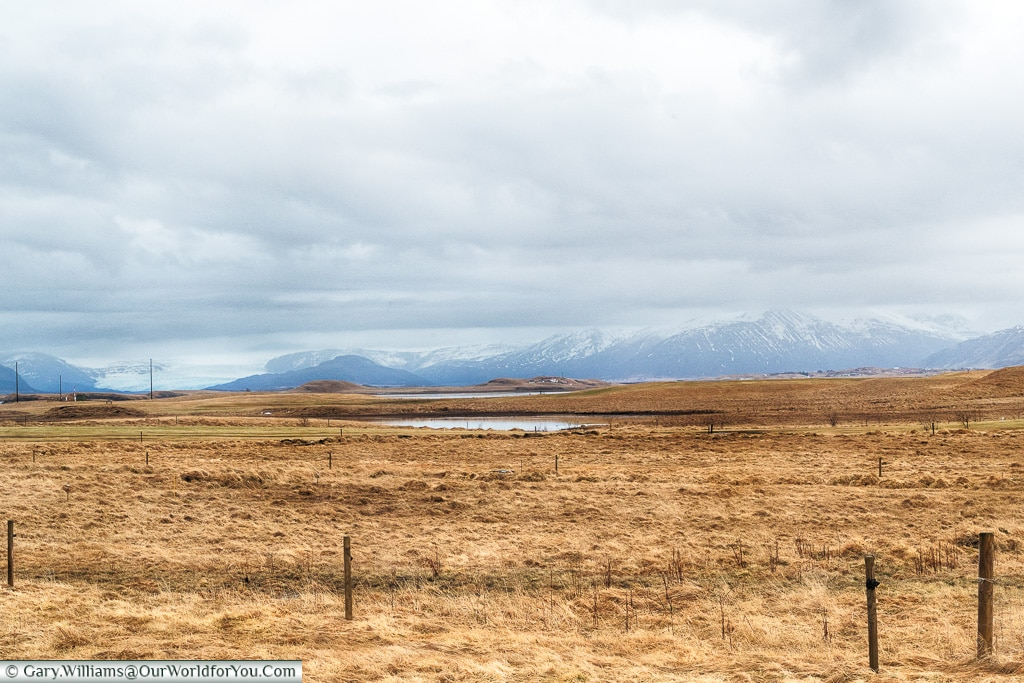 The view from the Milk Factory, Höfn, Iceland