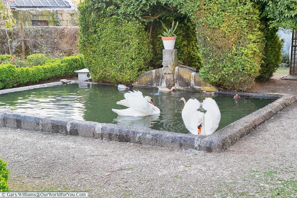 The gardens of Casa Dos Pombais, Guimarães, Portugal