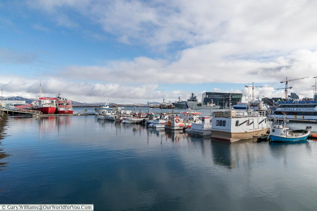 Whale watching ships in the harbour, Reykjavik, Iceland
