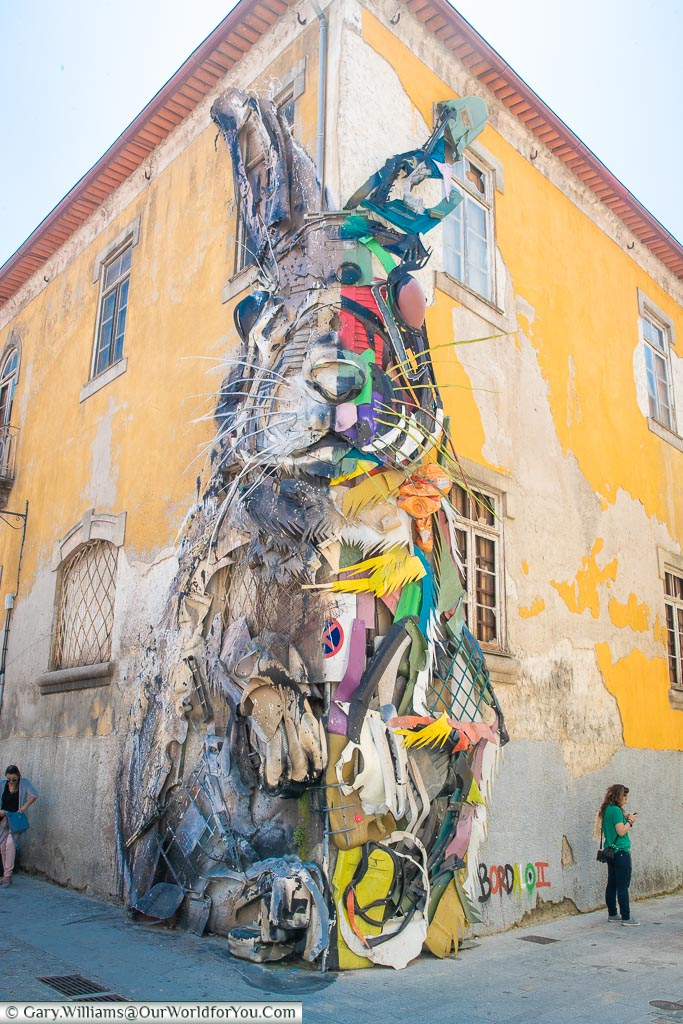 Recycled Rabbit, Porto, Portugal