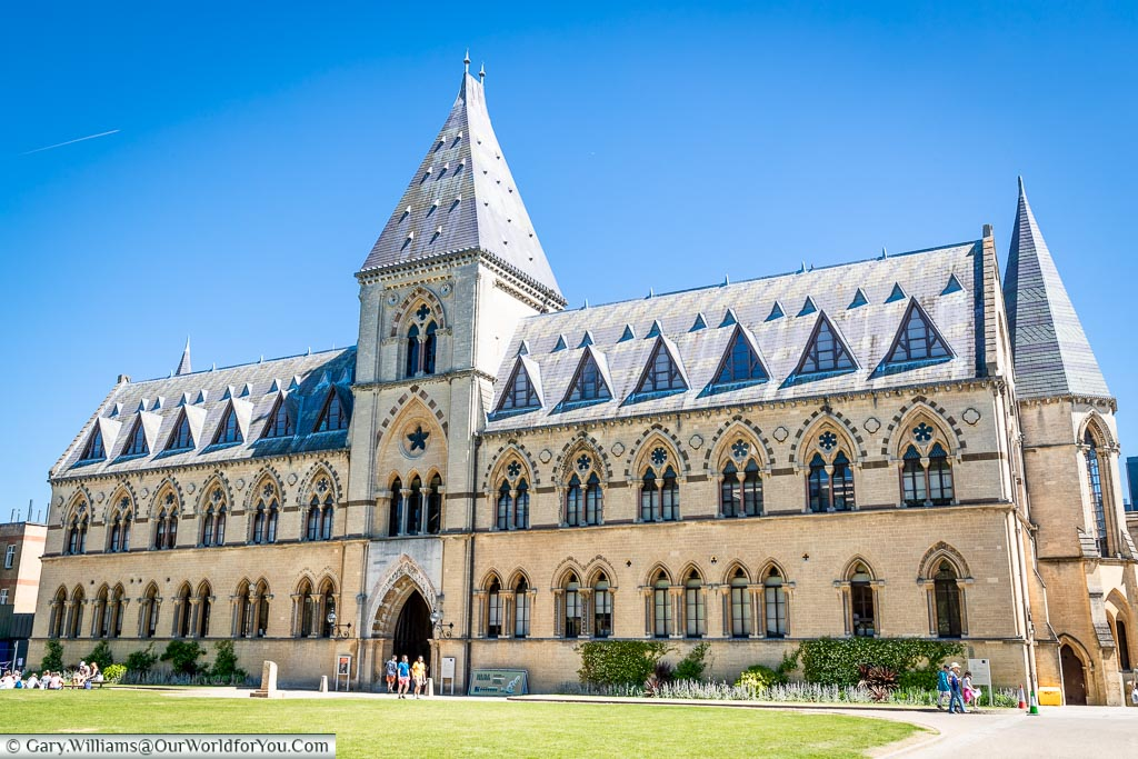 University Museum of Natural History, Oxford, England, UK