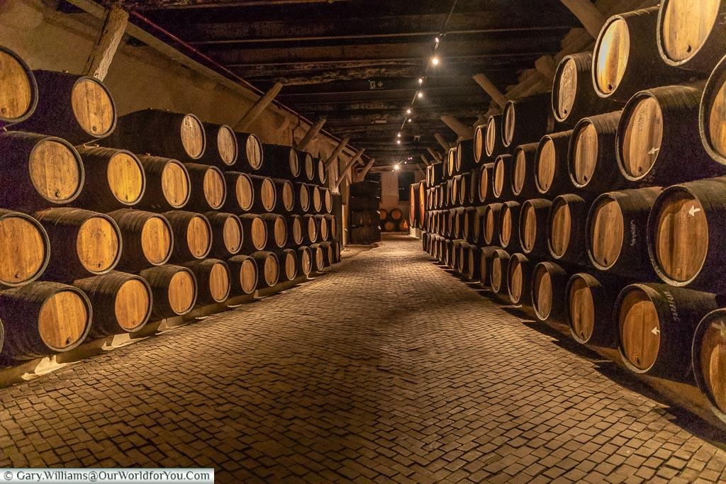 Ageing barrels, Sandeman house,, Porto, Portugal