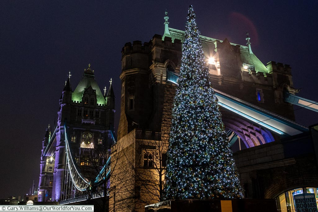 A Christmas tree in front of Tower Bridge, London at Christmas,
