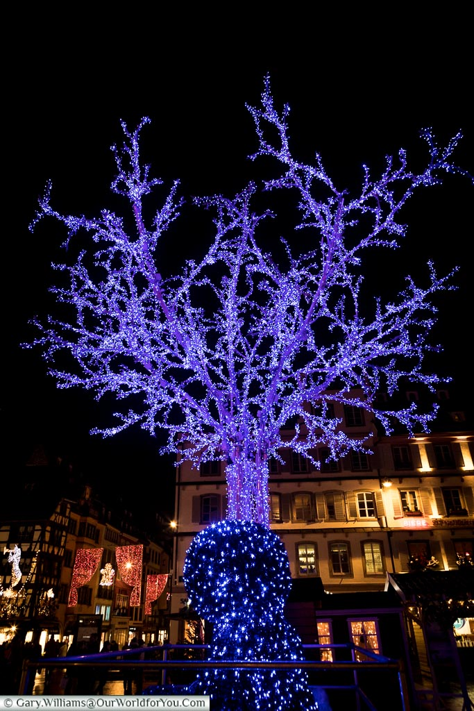 A lifesize artificial Christmas tree made entirely of blue fairy light stand in Place Gutenberg in Strasbourg.