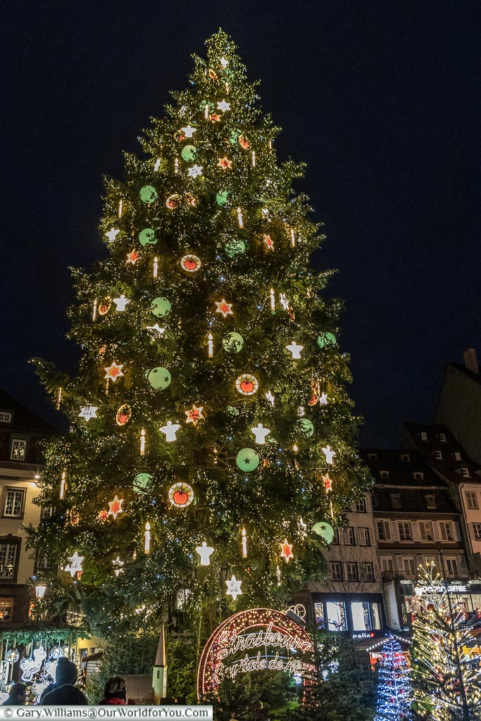 Looking up at the giant Christmas tree in Place Kléber at night.  This is the centrepiece of the cities Christmas Markets in Strasbourg.  The Christmas tree is brightly decorated with fairy lights and illuminated decorations.