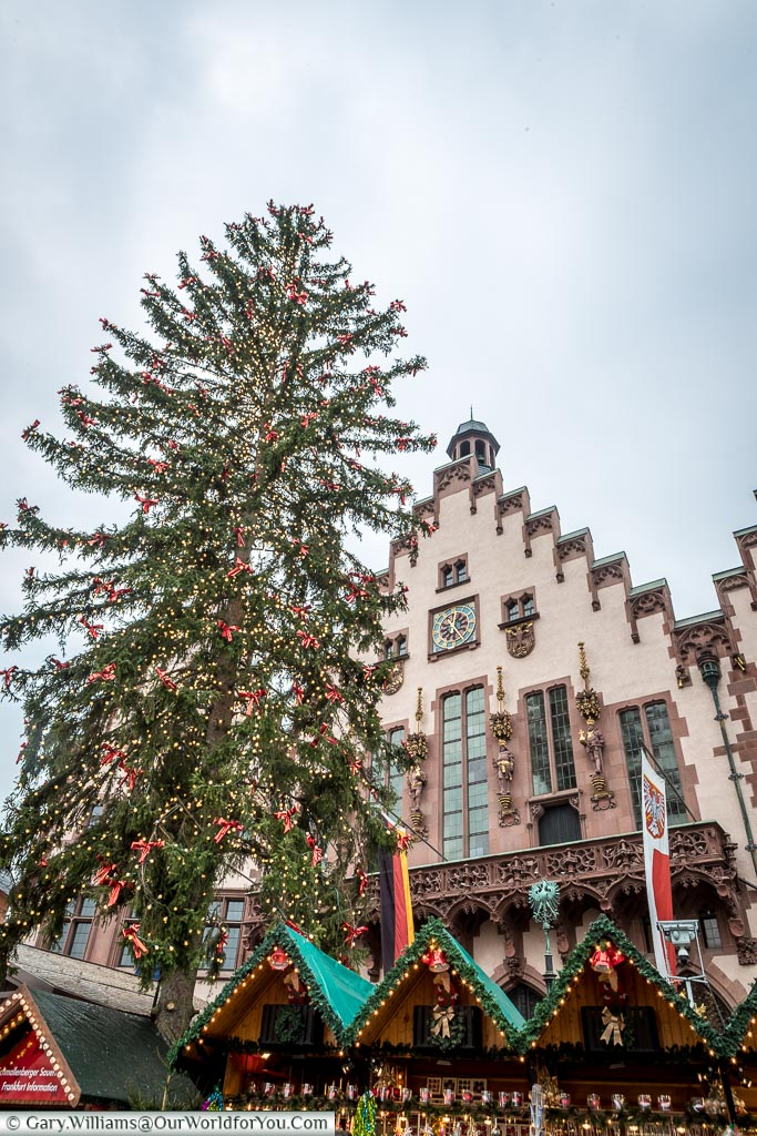 Looking up at the huge Christmas tree that dominated the market in Römerberg in front of the Römer.