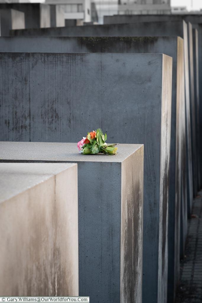 Holocaust Memorial flowers, Berlin German Christmas Markets