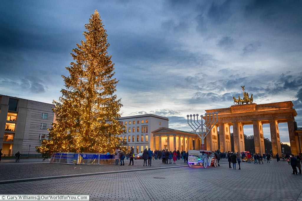 The Christmas Tree in front of the illuminated Brandenburg Gate at dusk.