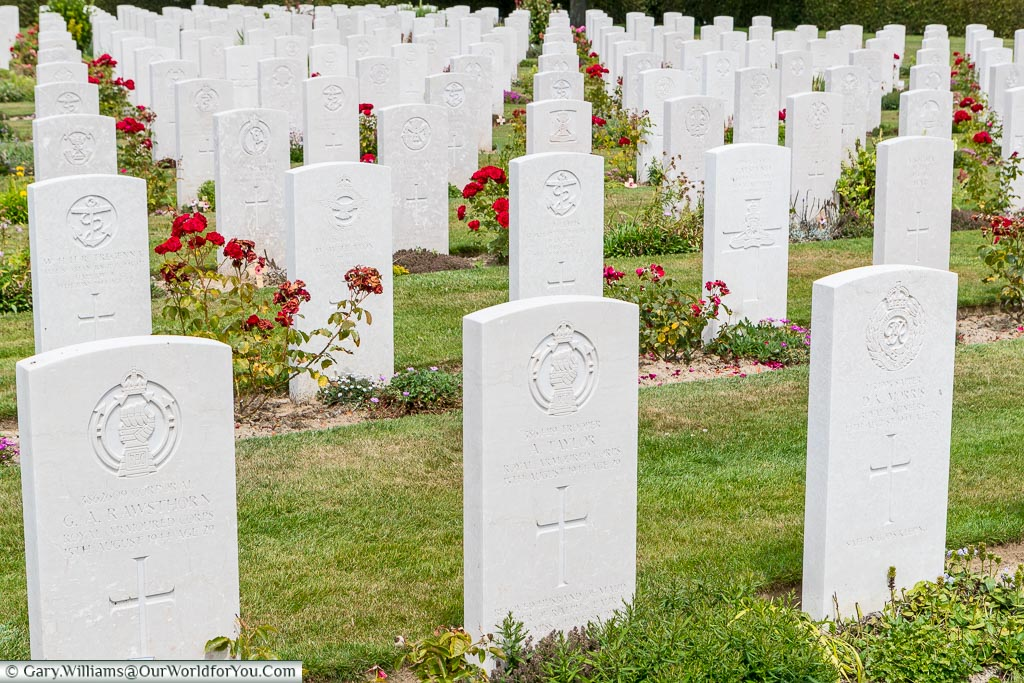 Rows of inscribed white headstones, punctuated with red roses, in the beautifully kept Bayeux Commonwealth Military Cemetery in Normandy.