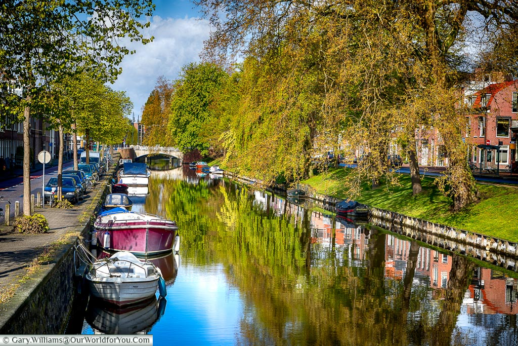A wide canal, with numerous little boats moored up at the edges, between tree line streets on the outskirts of Haarlem's old town.