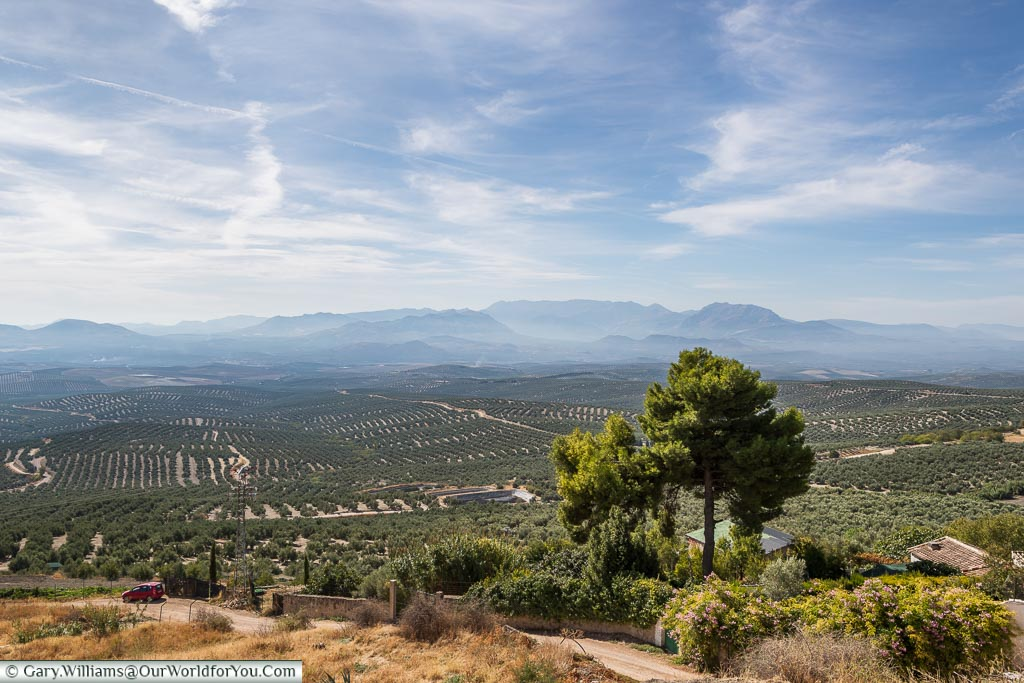 The view over the Olive groves, Úbeda, Spain