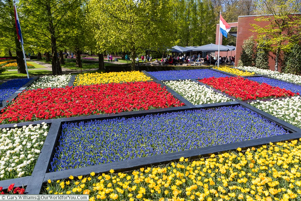 The Mondriaan design, Keukenhof, Holland, Netherlands