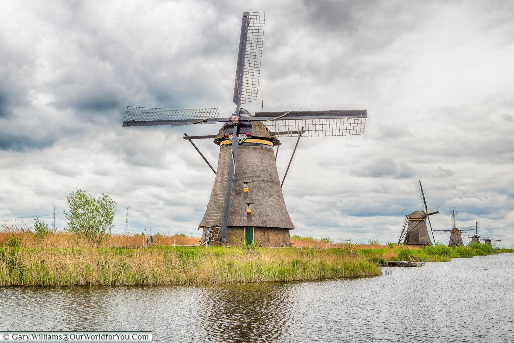 Windmills - 5 in a row, Kinderdijk, Holland, Netherlands