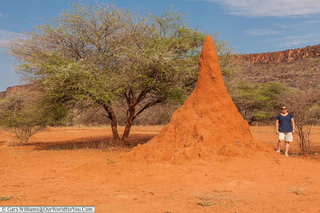 Janis next to a termite mound, Waterberg, Namibia