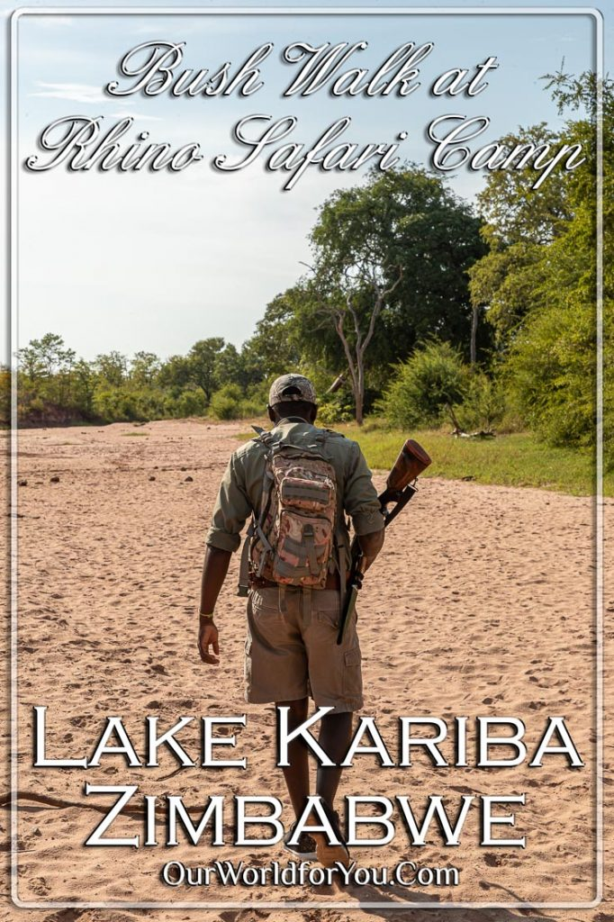 The Pin Image for our post - 'Bush Walk at Rhino Safari Camp, Lake Kariba, Zimbabwe'