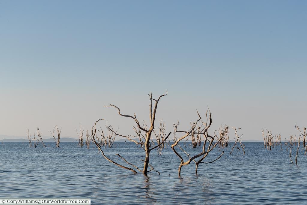 Changing landscape, Sundowner cruise, Rhino Safari Camp, Lake Kariba, Zimbabwe