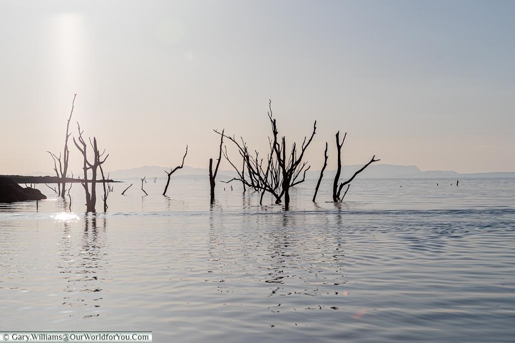 Cruising the lake, Sundowner cruise, Rhino Safari Camp, Lake Kariba, Zimbabwe