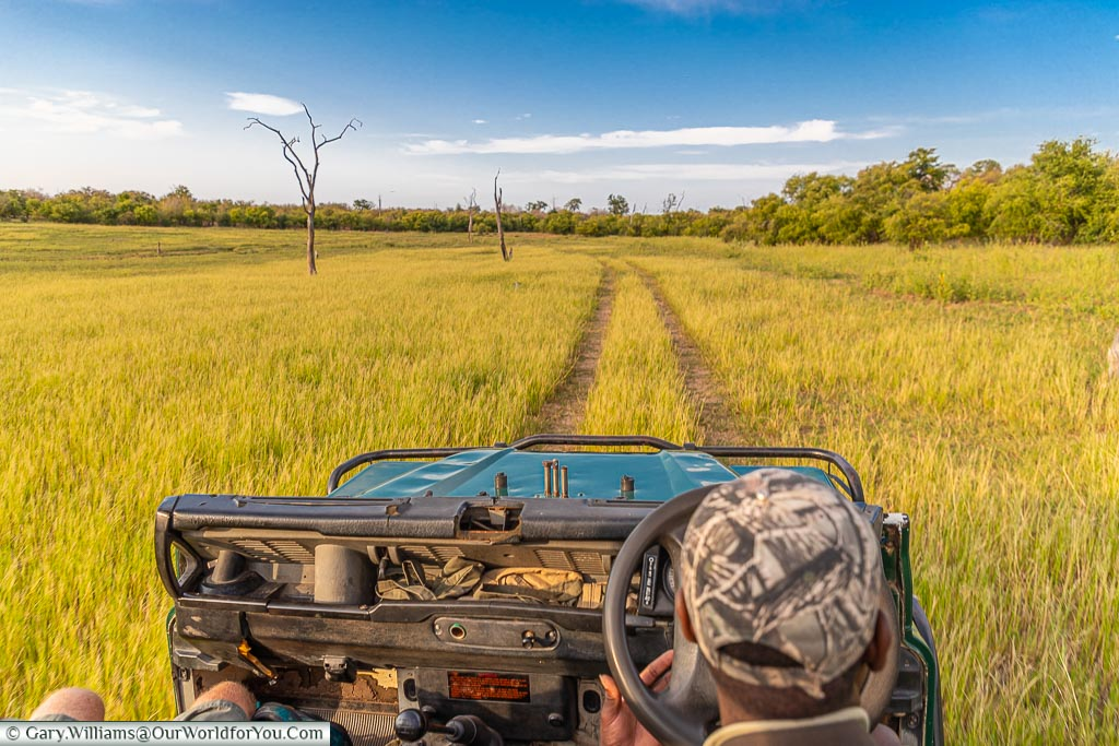 Heading out on the truck, Bush Walk, Rhino Safari Camp, Lake Kariba, Zimbabwe
