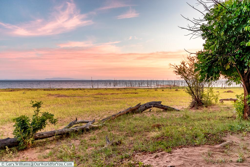 Morning glow at the camp edge, Rhino Safari Camp, Lake Kariba, Z
