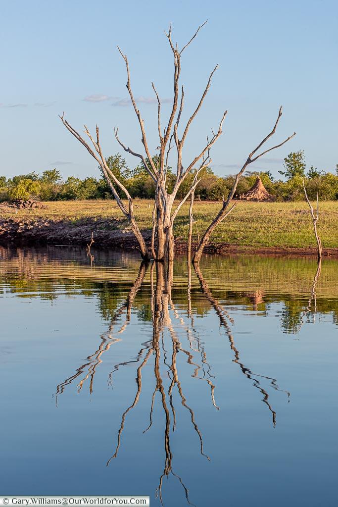 Reflection on the lake, Sundowner cruise, Rhino Safari Camp, Lake Kariba, Zimbabwe