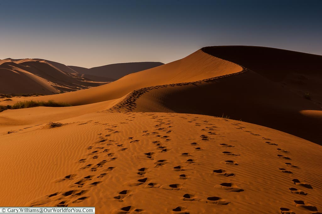 Tracks up Big Mamma, Sossusvlei, Namibia