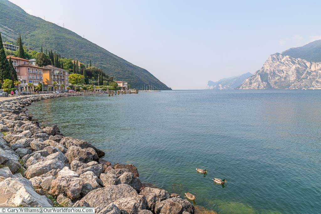 A view of Lake Garda, looking south from Trobole, with ducks in the foreground and flanked on either sides by the mountains.
