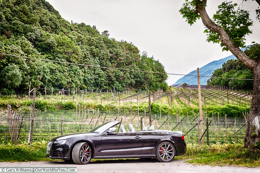 Our Audi convertible by the roadside with a vineyard in the background.