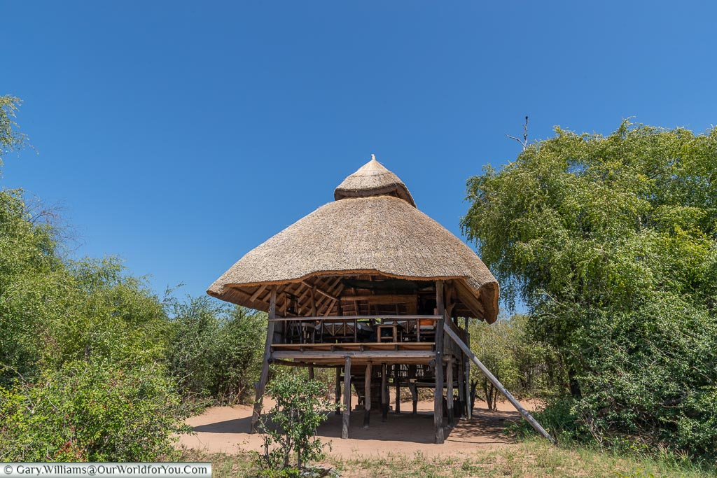 The outside view of our wooden lodge with its thatched roof raised off the ground to allow the wildlife to move freely through the camp.